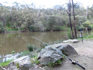 Yarra River Fishing Victoria